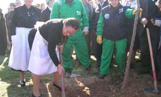 Villanueva de la Sierra plantará naranjos en la Fiesta del Árbol que cumplirá el Martes de Carnaval 209 años