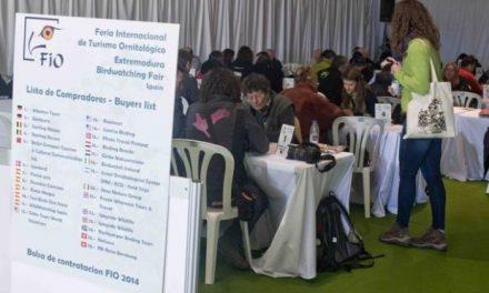 La dirección general de Turismo aclara que FIO no se moverá de Villarreal de San Carlos en próximas ediciones