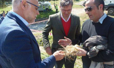 Echávarri destaca la inversión de 30 millones de euros hasta 2015 en montes extremeños