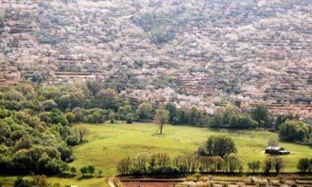Los afectados por la ordenación del  Valle del Jerte pide que se regularicen todas las construcciones