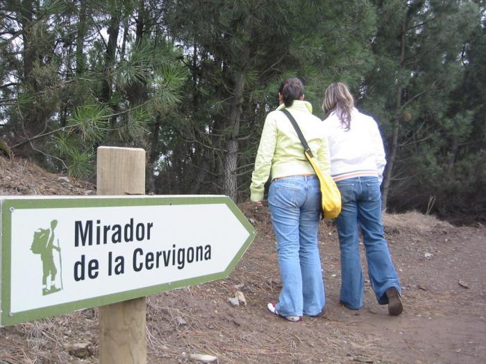 Acebo, Calzadilla, Descargamaría, Torrequemada y Zarza presentan sus folletos