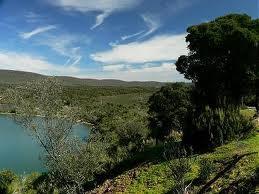 Adenex celebra el sábado en la localidad de Coria el XIII Día de la Orquídea en Extremadura