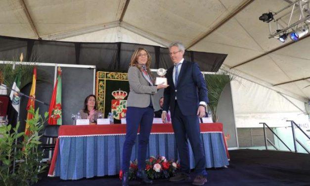 Teniente destaca el descenso en diez puntos de la tasa de paro juvenil en Extremadura en 2013
