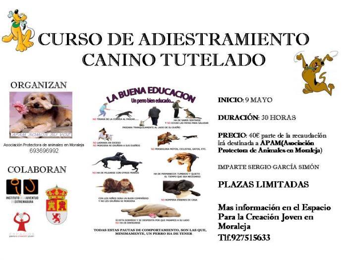 La localidad de Moraleja acogerá un curso de adiestramiento canino a partir del próximo viernes