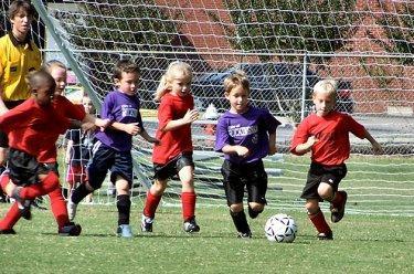 Dos colegios de Moraleja apuestan por inculcar los valores del deporte con las Olimpiadas Escolares