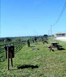 El Ayuntamiento de Almendralejo ha llevado a cabo la limpieza del parque rústico de Tiza
