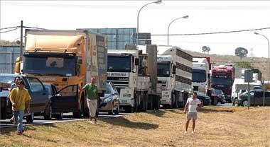 La caída de vacas muertas de un camión colapsa el tráfico en el acceso a Plasencia desde la N-630