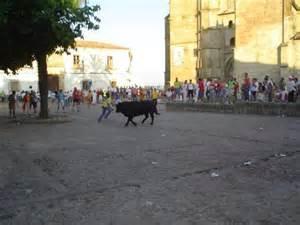 Coria inicia una campaña informativa para recordar la ordenanza reguladora de los festejos taurinos de San Juan