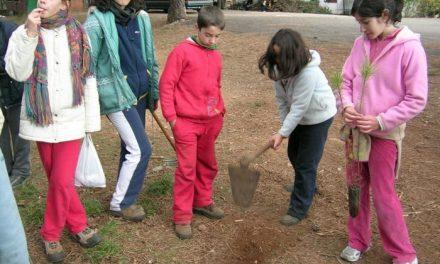El programa regional de reforestación llega a la localidad de Torrecilla de los Ángeles