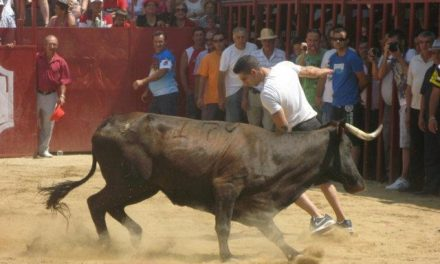 Moraleja abre este viernes San Buenaventura con la declaración de Festejos Taurinos Populares