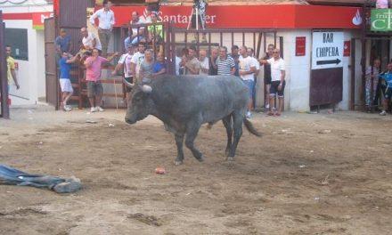 Los festejos taurinos de Torrejoncillo concluyen su segunda jornada sin incidentes