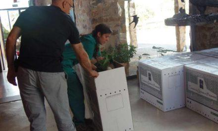 El director general de Medio Ambiente participa en la cesión de 13 buitres leonados reintroducidos en Bulgaria