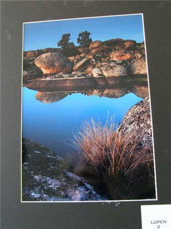 Vicente Elizo gana el concurso de fotografía del Cerezo en Flor con una imagen de Los Barruecos