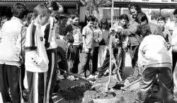 Una veintena de alumnos del colegio El Pilar de Villanueva de la Serena lleva a cabo la plantación de árboles