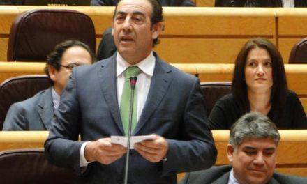 """El PP lamenta que el PSOE recurra a argumentos """"anclados en el pasado"""" y """"venda catastrofismo"""""""