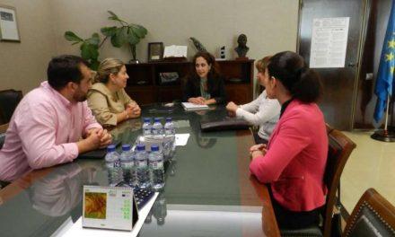 La consejera de Empleo se reúne con representantes de la Federación Extremeña de Familias Numerosas