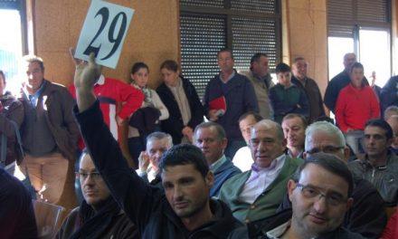 La Feria Agroganadera de Trujillo subastará más de 630 cabezas de ganado ovino y vacuno