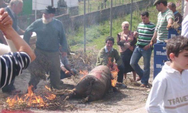 Rubiacó acogió a decenas de visitantes en la séptima edición de la matanza tradicional hurdana