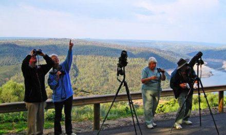 La Feria de Turismo Ornitológico publica las bases de su concurso de fotografía de naturaleza