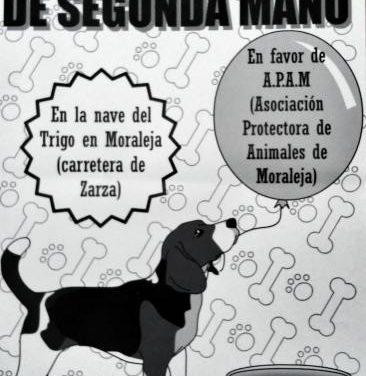 La Protectora de Animales de Moraleja organiza un mercado de segunda mano para recaudar fondos