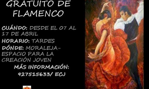 Moraleja impartirá talleres de flamenco y danza del vientre gracias al  VII Plan Local de Juventud