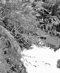 Medio Ambiente sanciona al Ayuntamiento de Almendralejo con 284.000 euros por vertidos ilegales