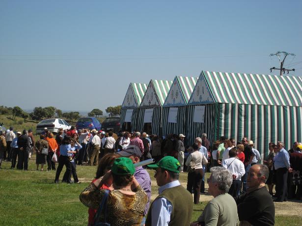 Carbajo acoge la celebración del Día de la Mancomunidad Sierra de San Pedro con unos 2.000 participantes