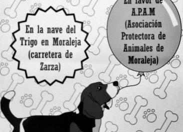 Moraleja acoge un mercado de segunda mano organizado por la Asociación Protectora de Animales de la localidad