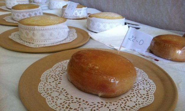 Más de un centenar de piezas de queso se presentan a la cata concurso de la XXX Feria del Queso de Trujillo