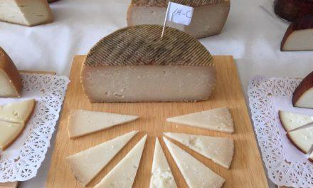 Tres quesos extremeños y uno manchego son elegidos como los mejores de España en la Feria de Trujillo