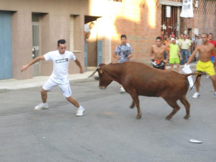 Vegaviana ofrecerá espectáculos taurinos en las fiestas en honor a la Virgen de Fátima y San Isidro