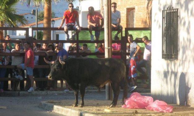 Un hombre de 64 años resulta herido por asta de toro en los festejos de Puebla de Argeme