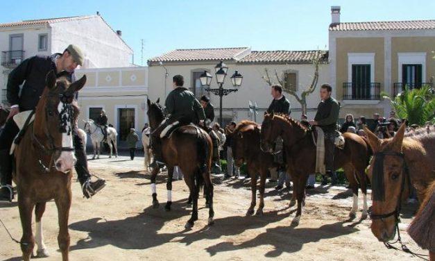 Albalá acogerá la X Feria del Caballo y el VI Concurso Morfológico-Funcional los días 18, 19 y 20 de abril