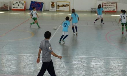 Torrejoncillo será sede este domingo de las finales de la Liga Provincial de Fútbol Sala