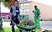Aprosuba 9 asumirá dos años más el servicio de mantenimiento de jardines en Villanueva de la Serena