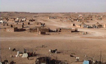 Los vecinos de Palomero colaboran con la Asociación de Ayuda al Pueblo Saharaui recogiendo alimentos