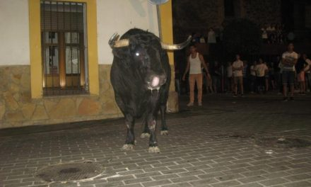 Los primeros festejos taurinos con reses bravas de San Buenaventura transcurrren sin incidentes