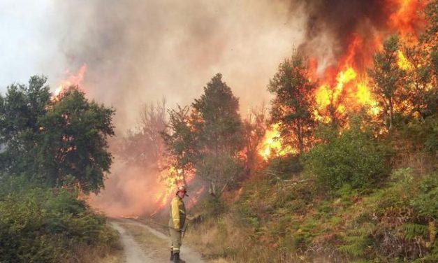 """La Unidad Militar de Emergencia califica de """"dantescos"""" los efectos del fuego en Sierra de Gata"""