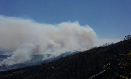 Se mantiene el Nivel 2 en el incendio de Sierra de Gata como medida de precaución