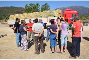 La Diputación y la Junta  reparten heno entre los ganaderos afectados por el incendio en de Sierra de Gata