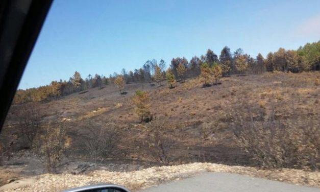 El Infoex rebaja a Nivel 1 el incendio de Sierra de Gata y se mantienen los efectivos sobre el terreno