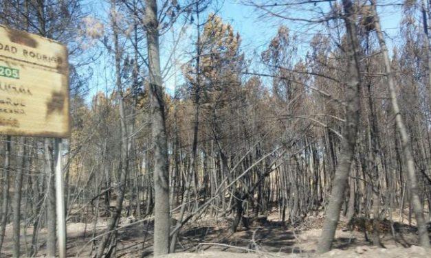 El Mando Único del Plan Infoex da por controlado el incendio de la comarca de Sierra de Gata