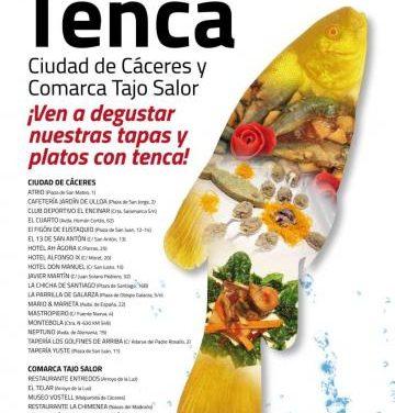 Cáceres Capital Gastronómica celebra el mes del Queso de la Serena con una cata de queso y cava