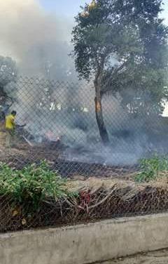 Dos helicópteros y varios medios terrestres trabajan en la extinción de un fuego en el término municipal de Perales