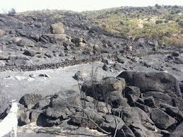 La comisión de investigación sobre el incendio de Sierra de Gata quedará constituida el 7 de octubre