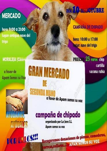 La Asociación Protectora de Animales de Moraleja celebrará este sábado un mercado solidario