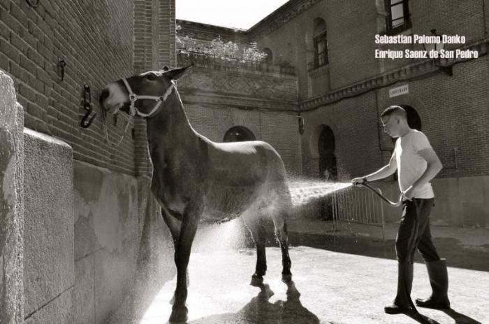 Coria despide este jueves la exposición fotográfica del hijo de Palomo Linares y Marina Danko