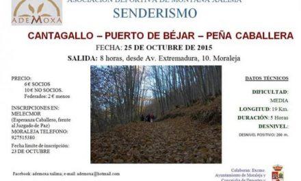 Ademoxa organiza una ruta senderista por Cantagallo, Puerto de Béjar y Peña Caballera