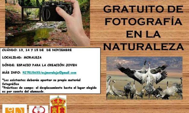 El Espacio para la Creación Joven de Moraleja acogerá un taller de fotografía en la naturaleza