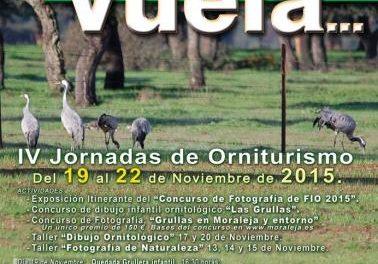 Las IV Jornadas Moraleja Vuela promocionarán el recursos ornitológico del 19 al 22 de este mes